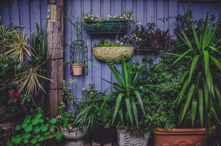 Mücken Garten